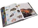 Животные. Иллюстрированная энциклопедия животных всего мира — фото, картинка — 3