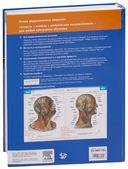 Sobotta. Атлас анатомии человека. В 2 томах (комплект из 2-х книг) — фото, картинка — 7