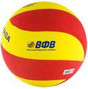 Мяч волейбольный Mikasa VSV 800 — фото, картинка — 1